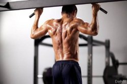 Комплексные или изолированные упражнения?